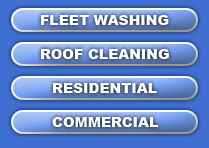 Indianapolis Indy Indiana Roof Cleaning Washing